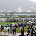梅雨の時期で競馬を当てる方法がある!?