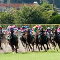 今週末の注目レースその1「中山牝馬ステークス(GIII)」