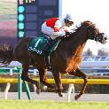 今週末の注目レースその3「金鯱賞(GII)」
