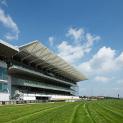 3月4週目の注目レースその2「高松宮記念」