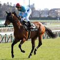 3月最終週/4月初週の注目レースその1「ダービー卿チャレンジトロフィー」