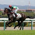 4月2週目の注目レースその2「阪神牝馬ステークス」