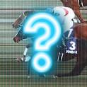 一体何が?頻発するレース映像とレース結果の食い違い